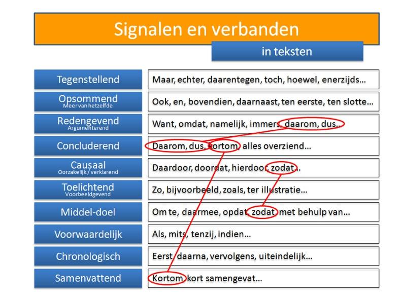 lezen nederlands oefenen
